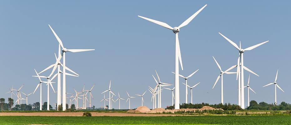field-service-software-windpark
